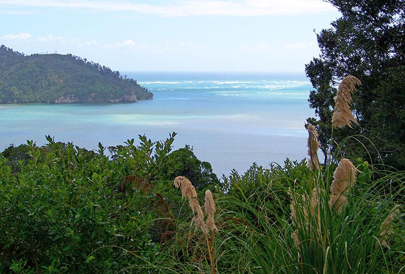 whanganui-inlet-06